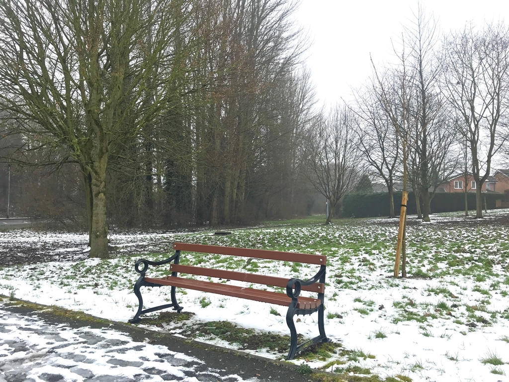 Leegate Avenue green space in the snow March 2018